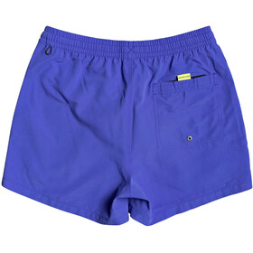 Quiksilver Everyday Volley 15 Pantaloncini Uomo, dazzling blue